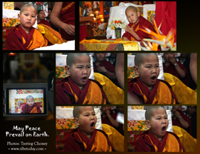 Young Monk- College of Higher Tibetan Leaning